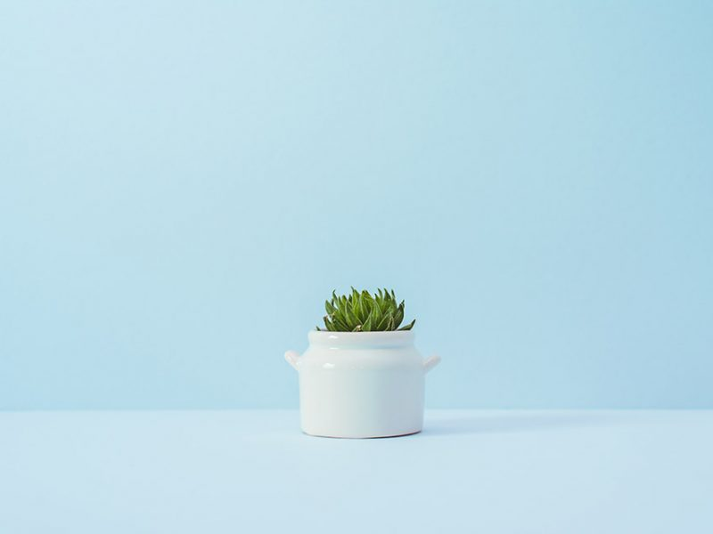 Best practices for minimalist design with example